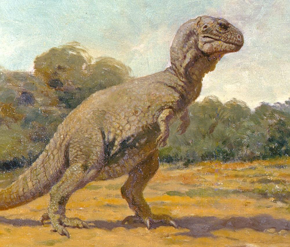 AMNH-Tyrannosaurus1-1000x853