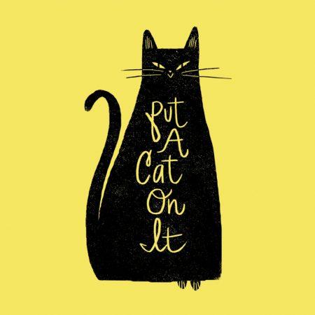 cats_putacatonit