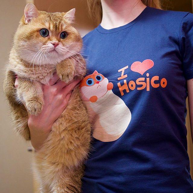 Hosico t-shirt