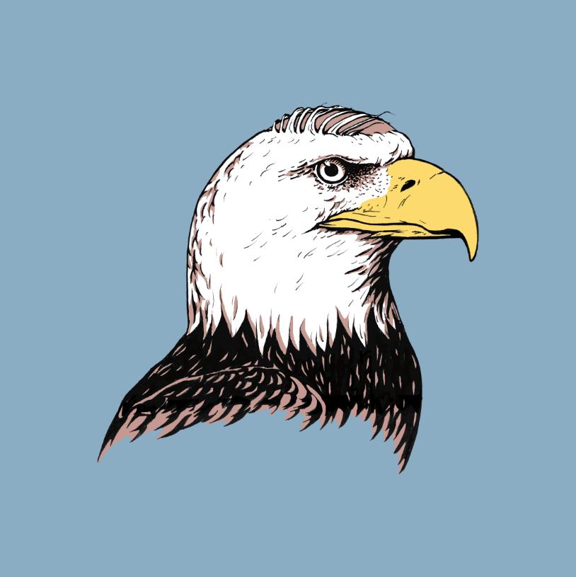 Puns - Bald Eagle