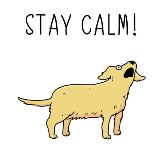 Dog designs - Stay Calm