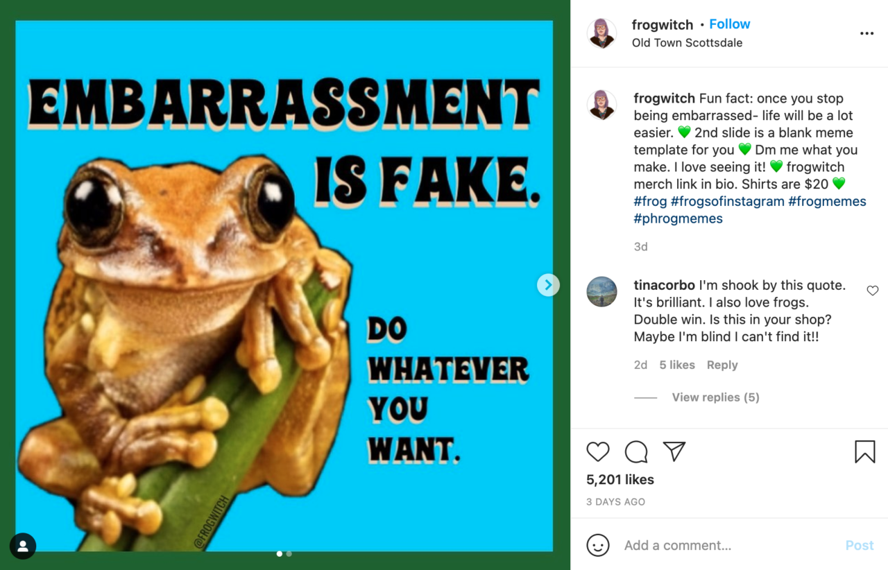 Frog Witch Instagram Post