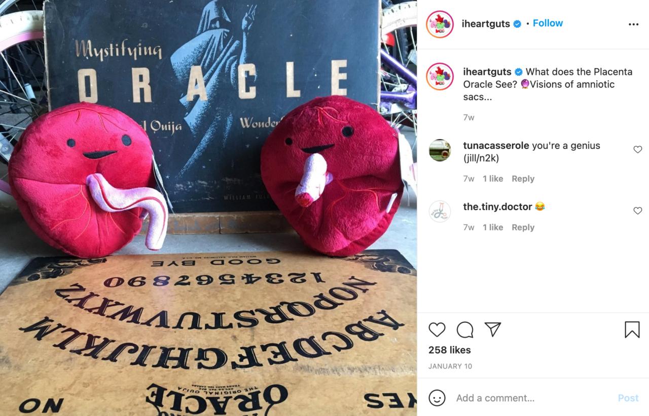 I Heart Guts Instagram Post